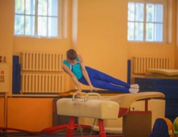 Северодвинский гимнаст-юниор успешно выступил на первенстве Северо-Западного федерального округа