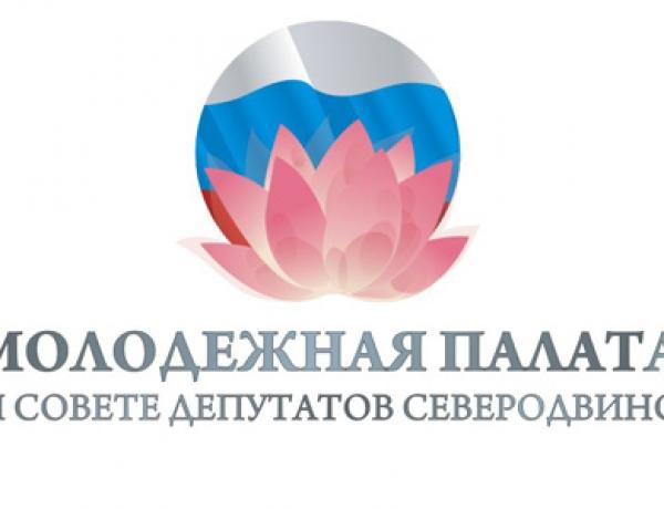 Определены кандидаты в новый состав Молодежной палаты Совета депутатов Северодвинска